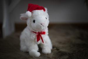 Lambert das Weihnachtslamm